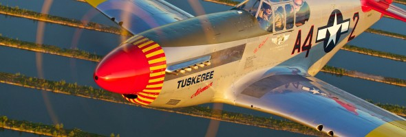 Tuskegee Mustang